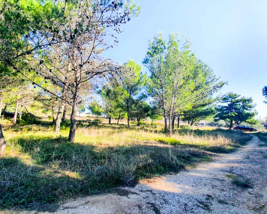 For sale_land in Vodice